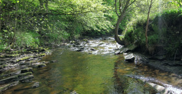 Elphin Brook, Mytholmroyd