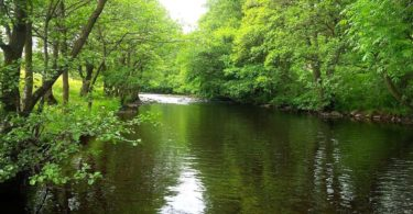 The river Nidd at Pateley Bridge