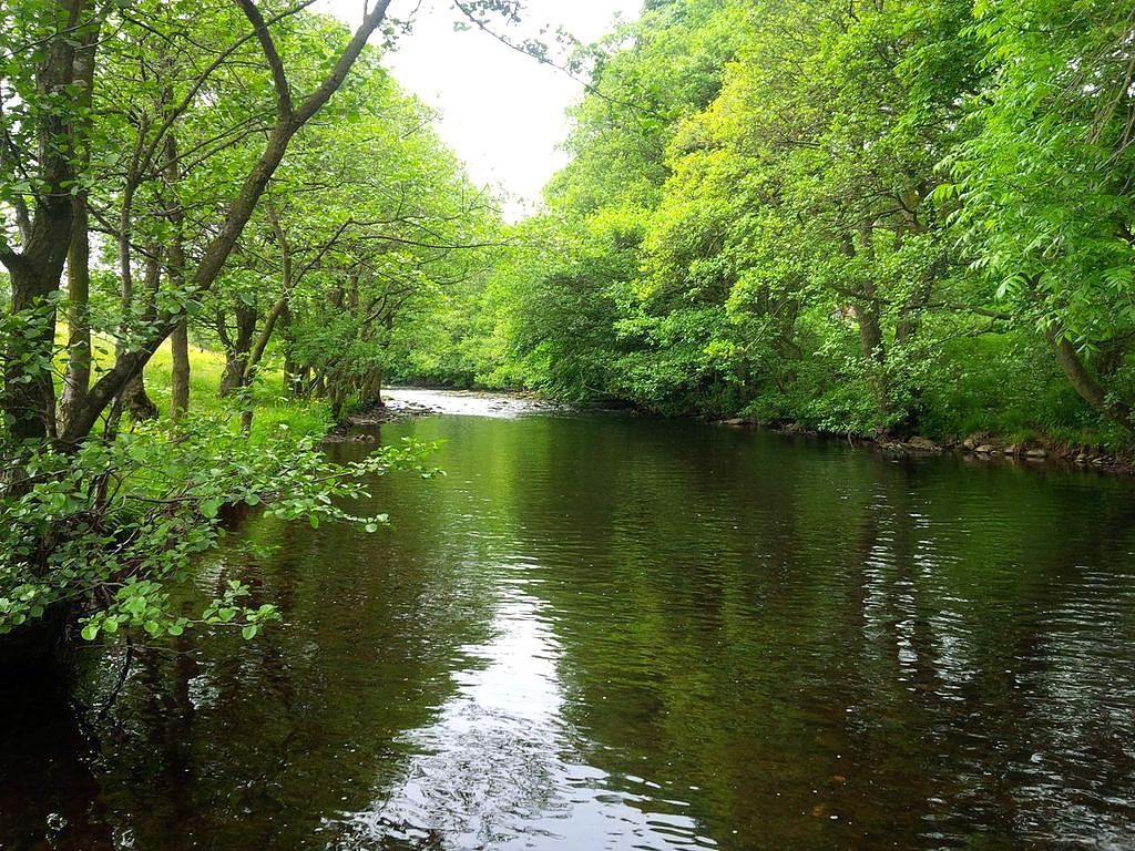 The river Nidd at Pateley Bridge