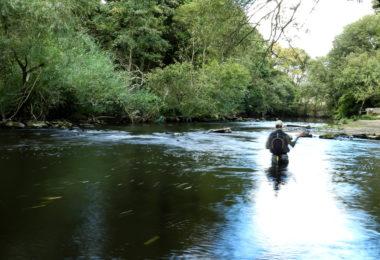 Jonathan Hoyle fishing the weir above Copley Bridge, River Calder near Halifax